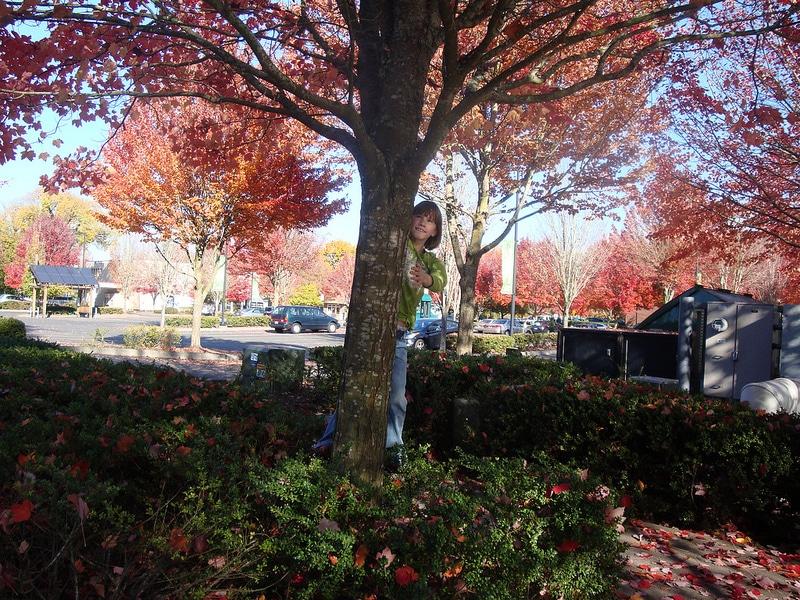 Annika_Tree